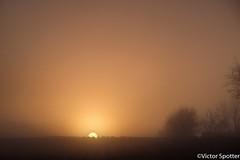 Sunrise (Viictor B) Tags: sun sunset sunrise sunshine campagne tourisme sud ouest arbre leaf leaves automne winter sky cloud fresh time photography lens objectif passion exploration