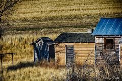 old homestead in Idaho (Pattys-photos) Tags: old homestead decay abandoned idaho pattypickett4748gmailcom pattypickett outhouse