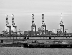 Seaforth Docks - Liverpool from New Brighton (Gilli8888) Tags: nikon p900 coolpix blackandwhite monochrome newbrighton merseyside wallasey docks liverpooldocks seaforthdocks cranes mersey rivermersey