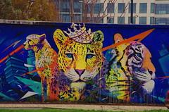 80 Paris décembre 2018 - canal Saint-Denis à côté du Stade de France (paspog) Tags: paris france saintdenis décembre december dezember 2018 canal canalsaintdenis streetart mural murals fresque fresques tags graffitis