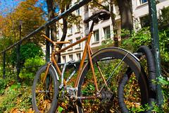 Wooden Bike (fjvallejo) Tags: bike bicycle vivid paris street