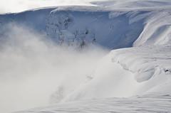 Les névés  -  Firns (Philippe Haumesser (+ 8000 000 view)) Tags: winter hiver snow nature paysage paysages landscape landscapes montagne montagnes mountain mountains ciel sky vosges alsace hautrhin 68 nikond7000 nikon d7000 reflex 2019 neige hautesvosges brume mist