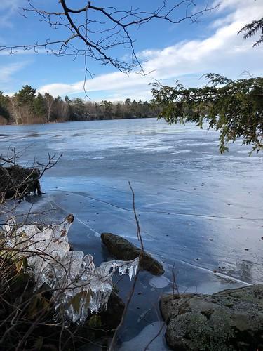Alford Lake - D Hastings