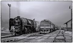 ČSD duo (maurizio messa) Tags: nikond90 slovensko slowakei slovacchia košickýkraj mau bahn ferrovia treni trains railway railroad teamlorie charter dampf steam vapore monochrome blackwhite bianconero bn bw sw čsd 556036 t679 t6791168 taigatrommel