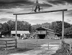 Gateway to 2019 (John Ilko) Tags: 500px gate gateway horse rural blackwhite monochromer fujifilm xe2 27mm primelens