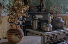 The perks of being a wallflower (Dafne Op't Eijnde) Tags: decayed decaying urbex abandoned lost home house flowers kitchen verlassen verlaten derp decay urbanexploration lostplaces