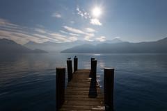 Lake Lucerne (eichlera) Tags: lakelucerne switzerland lake water alps mountains winter cold jetty seagulls