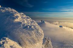 Deep winter (Bayerwaldteam) Tags: winter nebel schnee fog snow bavarian forest hochstein