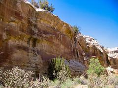 cougarox-20120519-1442-42-2.jpg (geophotocacher) Tags: geophotocacher tapiacanyon canyons landscape nm
