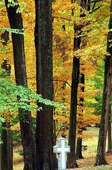 "Cincinnati - Spring Grove Cemetery & Arboretum ""Cross In The Wilderness"" (David Paul Ohmer) Tags: cincinnati ohio spring grove cemetery arboretum autumn fall cross"