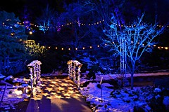 Winter Lights at the Rock, David Braley and Nancy Gordon Rock Garden, Royal Botanical Gardens, Hamilton, ON (Snuffy) Tags: winterlightsattherock christmas davidbraleyandnancygordonrockgarden rockgarden royalbotanicalgardens rbg holidaytraditions hamilton ontario canada
