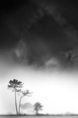 Zas (Noel F.) Tags: sony a7r a7rii fe 100400 gm zas galiza galicia neboa fog