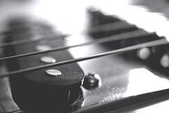 Guitar Strings - monochrome (Tanja-Milfoil) Tags: guitar gitarrensaiten 5300 makro blackandwhite guitarstrings milfoil tanja 311218 raynox strings string monochrom nikon macromondays macromonday redux2018