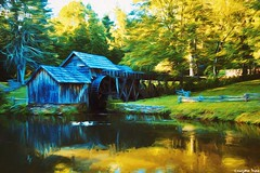 Write it (gusdiaz) Tags: virginia mabry mill mountains daytrip foliage pond water reflection duck patos aves arboles forest montañas history historic historia buildings structure parque bosque pasto grama madera charco reflejo agua gorgeous beautiful