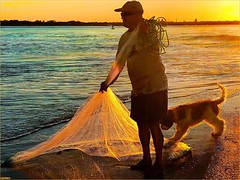 Fisherman's Friend (tom_roche21) Tags: fisherman'sfriend deepdowninflorida muddywaters castnet fisherman staugustineharbour seining mullet porpoisepointflusa vilanoinletflusa staugustineflusa searchingforthedolphins