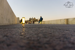 #puente #bridge #catedral #cathedral #mezquita #mosque #atardecer #sunset #río #river #ciudad #city #córdoba #andalucía #españa #spain #turismospain #paisaje #landscape #photography #photographer #sonyimages #sonyalohasclub #sonystas #sonyalpha #sonyalpha (Manuela Aguadero PHOTOGRAPHY) Tags: spain mosque sonyα6000 mezquita manuelaaguaderophotography city sonyalpha sonyimages catedral españa sony6000 río sonyalohasclub photographer paisaje cathedral puente atardecer córdoba turismospain andalucía sonya6000 sonystas ciudad sunset bridge river sonyalpha6000 landscape photography