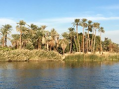 Esna, Egypt (cattan2011) Tags: seascape waterscape cruise river traveltuesday travelphotography travelbloggers travel rivernile naturelovers natureperfection naturephotography nature landscapephotography landscape egypt esna