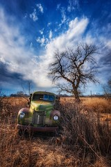 Abandoned Farm Truck (CTfotomagik) Tags: ford truck farm weeds vintage rusty rusted busted broken abandoned country cottonwood tree colorado rural decay