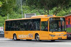 Sentosa Volvo B8RLE (Liannex) (SBS3449X) Tags: bus volvo b8rle sentosa liannex