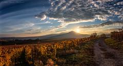 """The whisper ..."" (Peter Daum 69) Tags: sunset landscape scenery dream traum photoart farbe color canon eos wolken clouds berge mountains licht light sonne sun sonnenaufgang sunrise natur nature weg way sky"