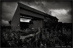 Fallen Tree... (SHADOWY HEAVEN) Tags: 15072690a0082 北海道 hokkaido 日本 ファインダー越しの私の世界 写真好きな人と繋がりたい 写真撮ってる人と繋がりたい 写真の奏でる私の世界 coregraphy japan tokyocameraclub igers igersjp phosjapan picsjp 空 雲 廃屋 廃墟 モノクロ モノクローム モノクロ写真 白黒写真 bnwlife bnwdemand igersbnw noirshots monochrome mono monotone blackandwhite bw bnw blackwhite noiretblanc japaninbw blackwhitephotos dark outdoor landscape paysage cloud clouds sky weeds grass abandoned decay forgotten broken