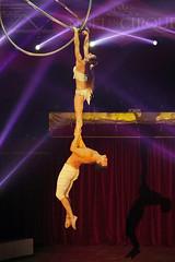 Duo 2-Zen-O (David B. - just passed the 7 million views. Thanks) Tags: circus cirque valence valencedagen tarnetgaronne midipyrénées occitanie france artist artists performer performers performance show sony a6000 ilce6000 sonya6000 sonyilce6000 70200g 70200 sonyfe70200g sonyfe70200mmf4goss stage people sport duo2zeno duo 2zeno music live acrobat acrobats