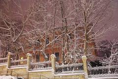 Засніжений зимовий Київ 383 InterNetri.Net Ukraine