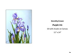 "Purple Iris • <a style=""font-size:0.8em;"" href=""https://www.flickr.com/photos/124378531@N04/32914645368/"" target=""_blank"">View on Flickr</a>"