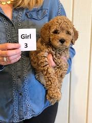 Lucy Jo Girl 3 1-19