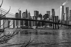 Skyline (Pepe Soler Garcisànchez) Tags: newyork nyk2018 nuevayork broadway jfk memorial skyline dumbo manhattan bridge oneworld