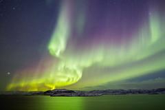 Aurora borealis (tranqvilizator) Tags: auroraborealis aurora polarregion teriberka kola polarnight barentssea sea landscape nature sigma20mmf14 water sky winter snow
