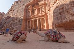 10162018_Petra_07422676 (George Pachantouris) Tags: jordan hasemite petra aqaba amman middle east travel tourism holiday warm ancient nabateans treasury roman indiana jones arab arabic