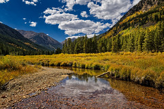 Halfmoon Creek Gold (Fort Photo) Tags: lakecounty aspen fall nature landscape co colorado creek stream water sky gold halfmoon autumn yellow reflection