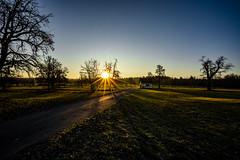 Sonnenaufgang (Sascha Wolf) Tags: autumn herbst sonnenaufgang weitwinkel sonne feld wiese dettenhausen sony a7
