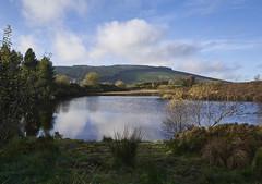 Gortin Lakes (Hector Patrick) Tags: cotyrone flickrelite leicaq nireland sunlight gortin leica