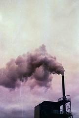 Purple smoke (herbdolphy) Tags: analogique argentique analog factory 35mm pellicule pentax p30n 50mm film filmisnotdead fuji superia grain purple smoke