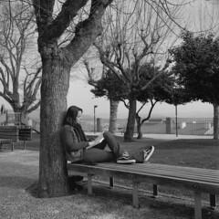 Harmony (lebre.jaime) Tags: people street photography park girl reading tree bench table bw blackwhite noiretblanc pb pretobranco sw schwarzweis ptbw hasselblad distagon cf3560 500cm kodak trix