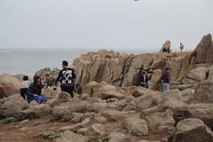 IMG_10951 (mudsharkalex) Tags: california pacificgrove pacificgroveca loverspointpark