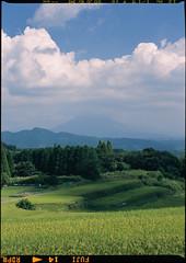 Sakurajima from Yae (WilliamJosephJefferson) Tags: pentax645 provia100f pentax80~160 film analog art