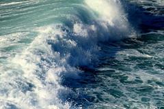 ROAR (André Pipa) Tags: bigwave portugal nazaré nazarécanyon onda sea ocean mar mare poderdomar nazarépowerfulwaves surfportugal photobyandrépipa