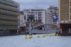 45 Paris décembre 2018 - des cormorans sur le Bassin de La Villette (paspog) Tags: paris france décembre december dezember 2018 bassindelavillette
