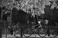 Under the Trees (Bury Gardener) Tags: candid cambridgeshire cambridge england uk britain streetphotography street streetcandids snaps strangers candids people peoplewatching folks 2018 nikond7200 nikon bw blackandwhite monochrome mono