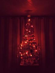 Новогодняя ёлка (msergeevna) Tags: новыйгод зима 2019 prestigio winter tree christmastree newyear