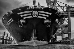 Im Containerhafen, Hamburg / In the container port, Hamburg (ludwigrudolf232) Tags: einfarbig hafen containerschiff hamburg wasser