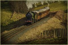 Severn Valley Railway(UK) (williamwalton001) Tags: severnvalleyrailway pentaxart steamengine historic colourimage texture trees timber fineart fence unitedkingdom heritage