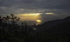 Sunshower over South China Sea (courtney_meier) Tags: hongkong landscape southchinasea thepeak clouds evening forest magichour ocean ray rays sea sunlight sunset sunshower trees tropicalforest