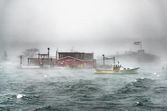 Nor'Easter at Cook's Lobster (BenjaminMWilliamson) Tags: attraction baileyisland coastofmaine cookslobsterhouse garrisoncove gulfofmaine harpswell icon iconic image landmark me maine maineart mainephotography mist newengland noreaster ocean photo photography scenery scenic seasmoke storm waves wind winter flag