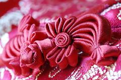 Chinese silk Dress in red (Christian Chene Tahiti) Tags: canon 6d paea tahiti macromondays cloth vêtement linge bouton boutonchinois auckland red rouge white couleur colour hmm macro bokeh closer closeup soie robe dress