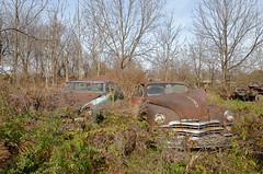 Pull a part salvage (epaves68) Tags: car auto junk junkyard salvage boneyard wreck classic vintage vw volkswagen cadillac chevrolet chrysler ford