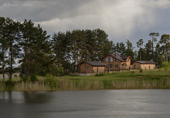 Houses on the shore of the lake (Lyutik966) Tags: building structure wood window roof water nature tree plant pine architecture svetlitsa seliger russia